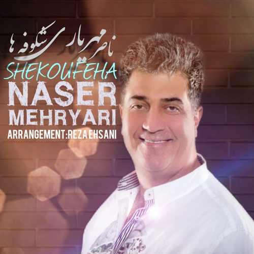 دانلود آهنگ ناصر مهریاری شکوفه ها