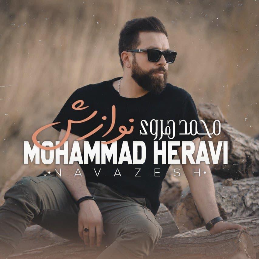 دانلود آهنگ محمد هروی نوازش